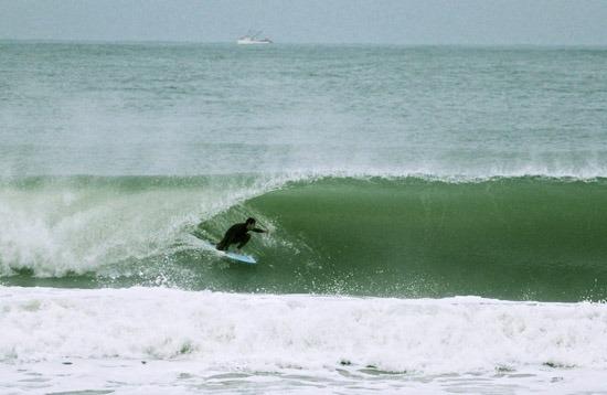 Surfing - Brava Beach