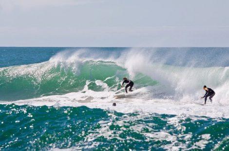 bg-surfer