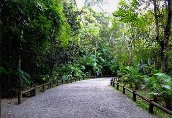 Trilha Parque Ecologico do Corrego